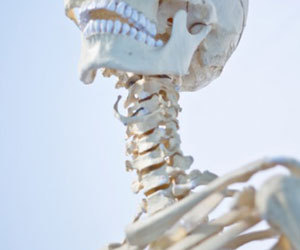 首の痛み-後ろ-左-右-寝違え-リンパ-頭痛-吐き気-上を向く-首が痛い-原因-骨画像.jpg