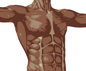 筋肉痛の治し方-太もも-ふくらはぎ-腕-人体画像.jpg