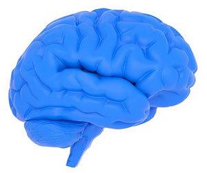 認知症-種類-特徴-症状-違い-割合-接し方-脳画像.jpg